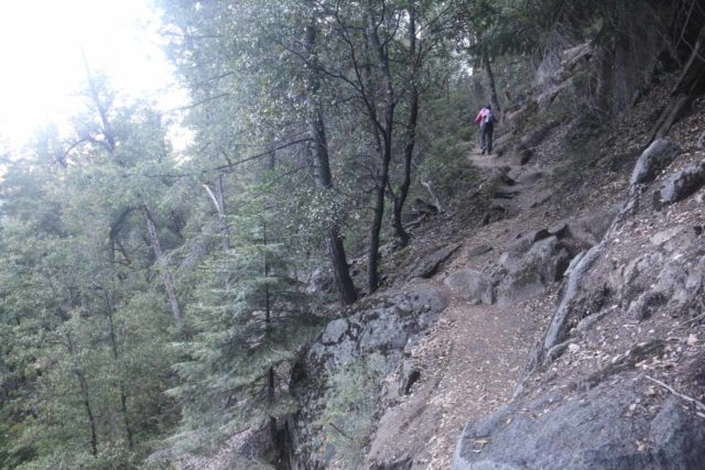 Chilnualna_Falls_17_042_06172017 - Context of Mom continuing the steep climb beyond the first of the Chilnualna Falls and eventually rejoining the stock trail