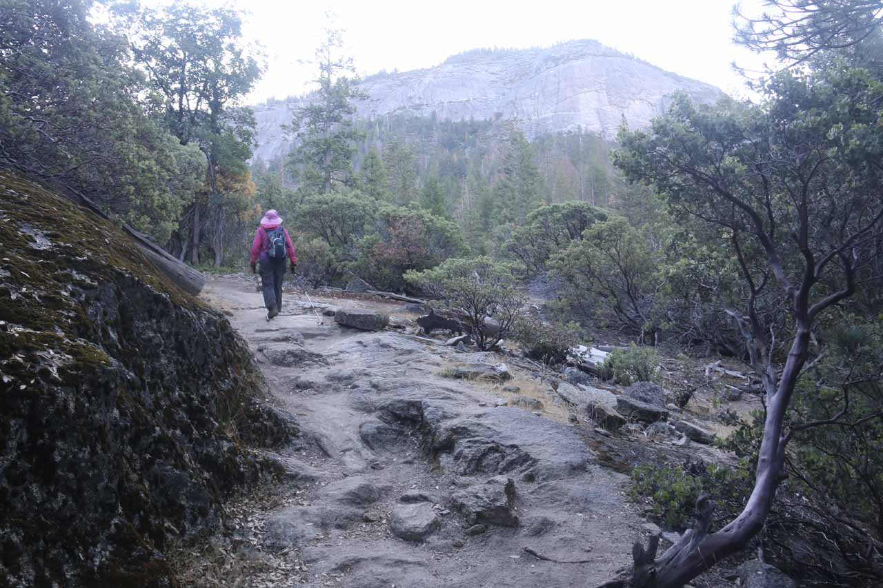 Further up the trail, we started to get our first glimpses of the Wawona Dome