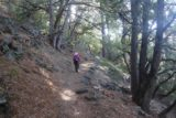 Chilnualna_Falls_17_150_06172017 - Mom resuming with the Chilnualna Falls Trail as it continued climbing through a brief forested stretch where we got back some shade in our June 2017 hike