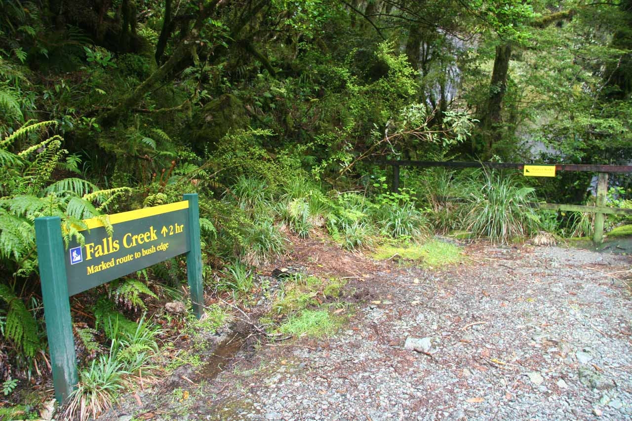 When we returned to Milford Sound in December 2009, we paid a bit more attention to things like this sign for the Falls Creek Track