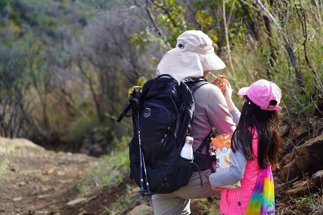 The Osprey Ozone 46 is a travel backpack that is also capable of doing the job on day hikes as well