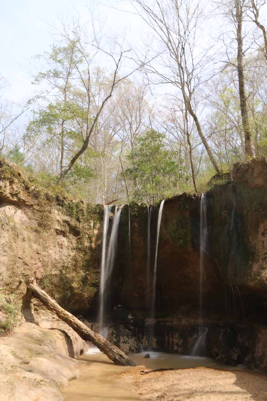 One of the Clark Creek Waterfalls
