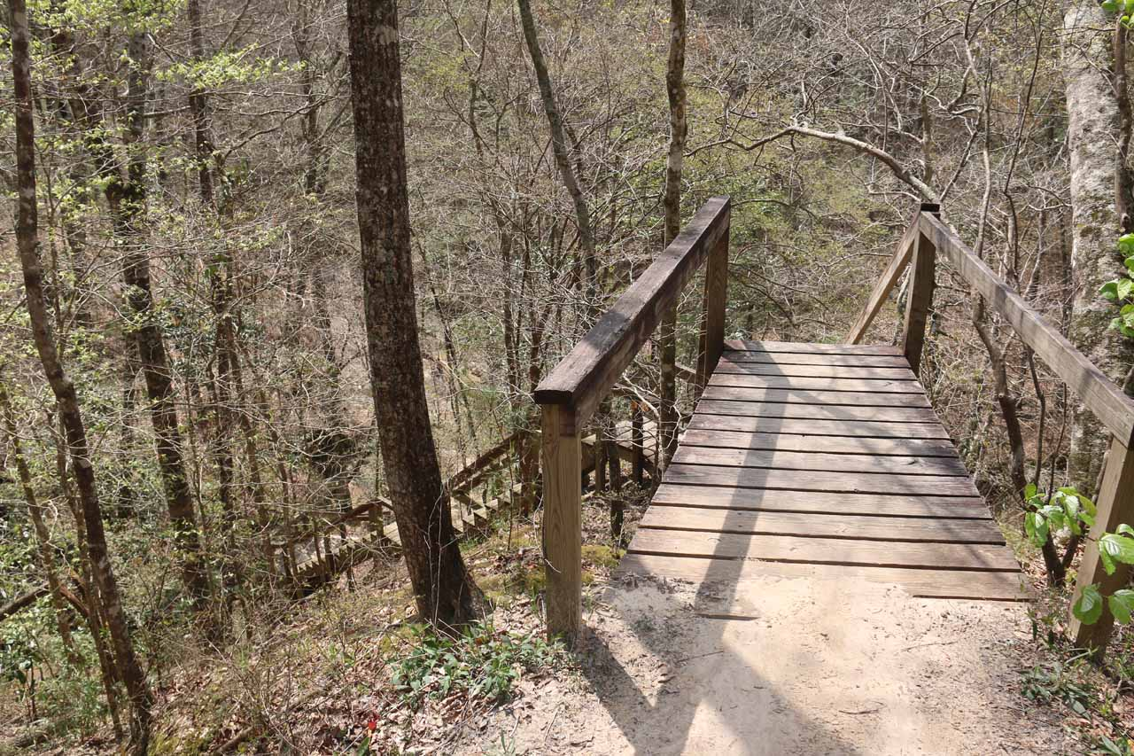 Then, the Waterfall Trail descended this long set of wooden steps