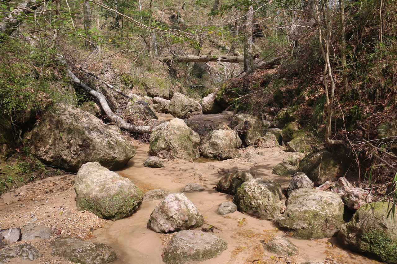 It didn't take long before the stream scramble also involved some rock scrambling