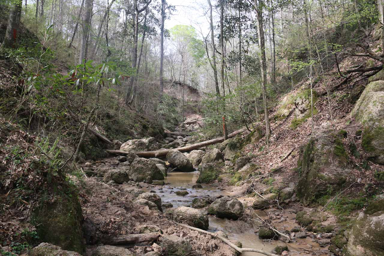 Now doing the muddy and rocky stream scramble to get up to the fourth Clark Creek Waterfall