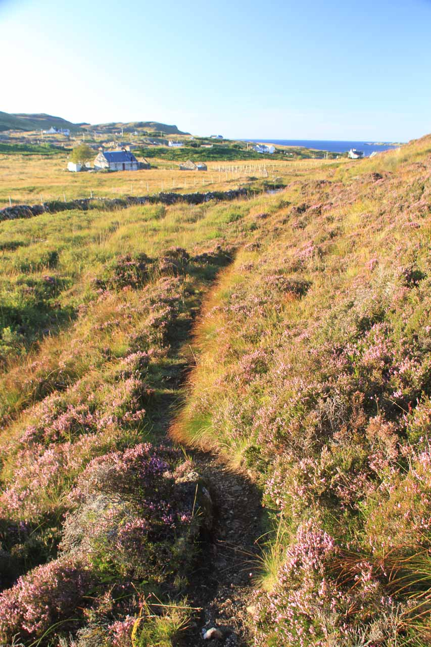The faint walking path that I tried to follow on the way back to the car park