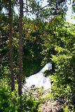 Clear_Creek_Falls_004_06212021 - Partial look at the upper drop of Clear Creek Falls