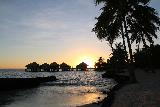 Coconuts_Beach_Club_009_11102019