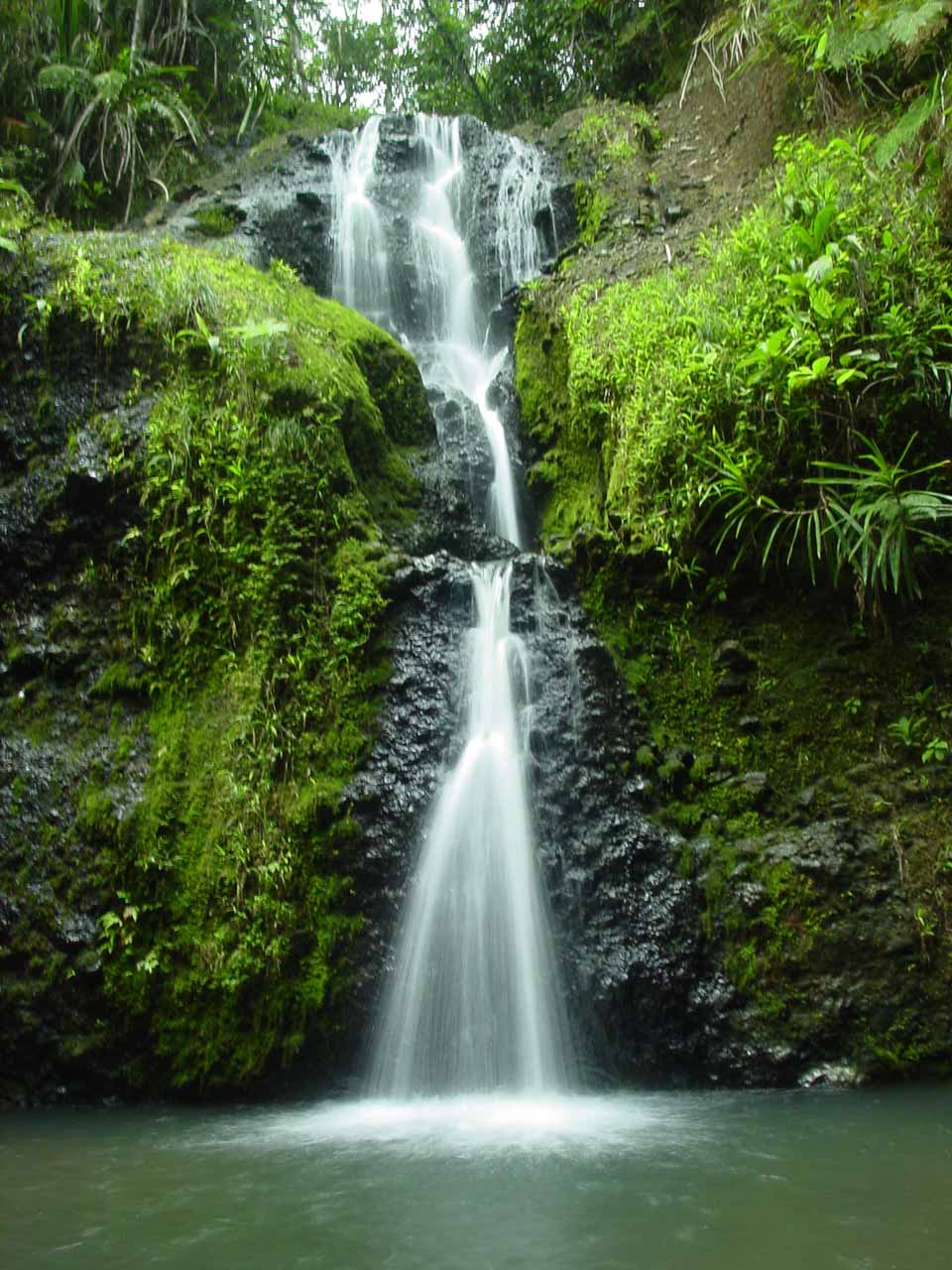 Waisila Falls in Colo-i-Suva near the capital city of Suva