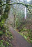 Columbia_River_Gorge_015_03282009 - Path to base of Latourell Falls