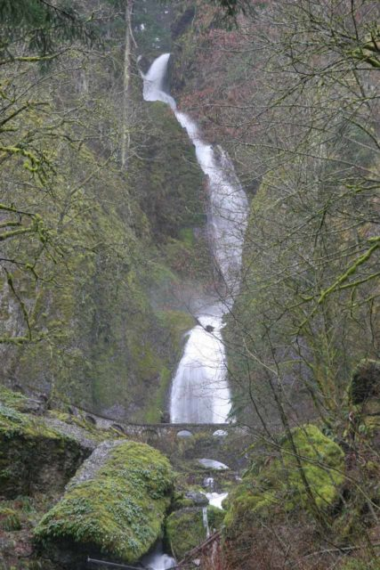 Columbia_River_Gorge_068_03282009