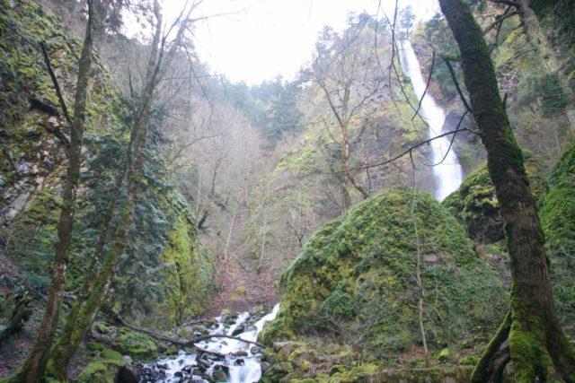 Columbia_River_Gorge_110_03292009 - Starvation Creek Falls