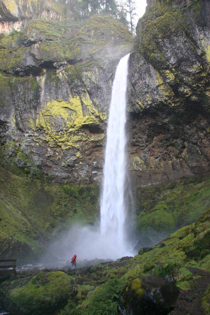 Waterfalling also compelled us to visit other lesser known waterfalls of the Columbia River Gorge in Oregon such as Elowah Falls