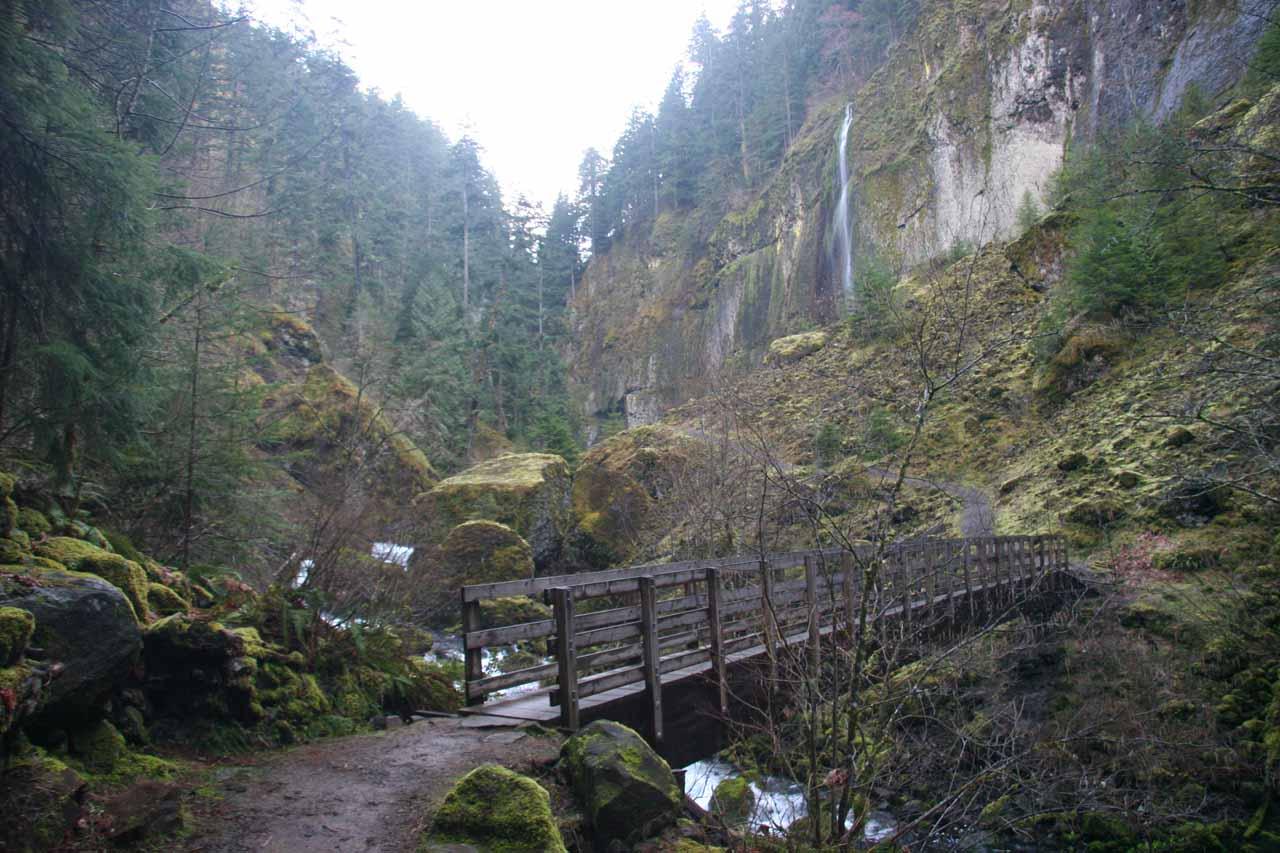Looking back at the wispy waterfall near Wahclella Falls