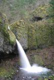 Columbia_River_Gorge_261_03302009
