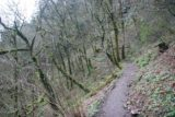 Columbia_River_Gorge_299_03302009 - This was what the Oneonta Trail looked like in the early Spring when Julie and I first did this hike back in late March 2009