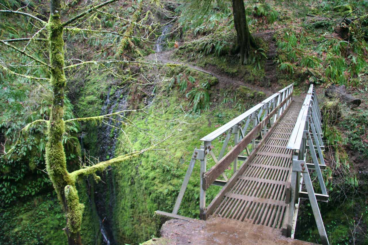 Looking beyond the footbridge towards the trail leading to Ponytail Falls