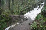Columbia_River_Gorge_317_03302009 - When I first did the Triple Falls hike back in late March 2009, I actually encountered this patch of snow