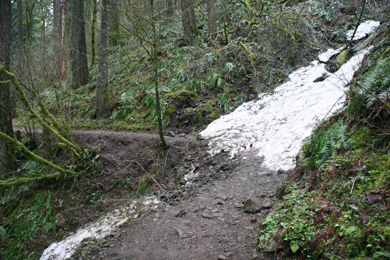 Patches of snow were still on parts of the trail back in late March 2009