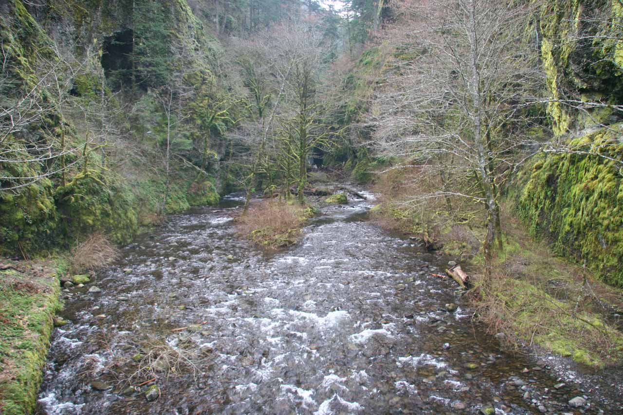 This was Oneonta Creek from the road bridge in late March 2009