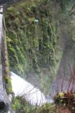 Columbia_River_Gorge_405_03302009 - Looking down across the lower drop of Multnomah Falls from around the Benson Bridge during our late March 2009 visit