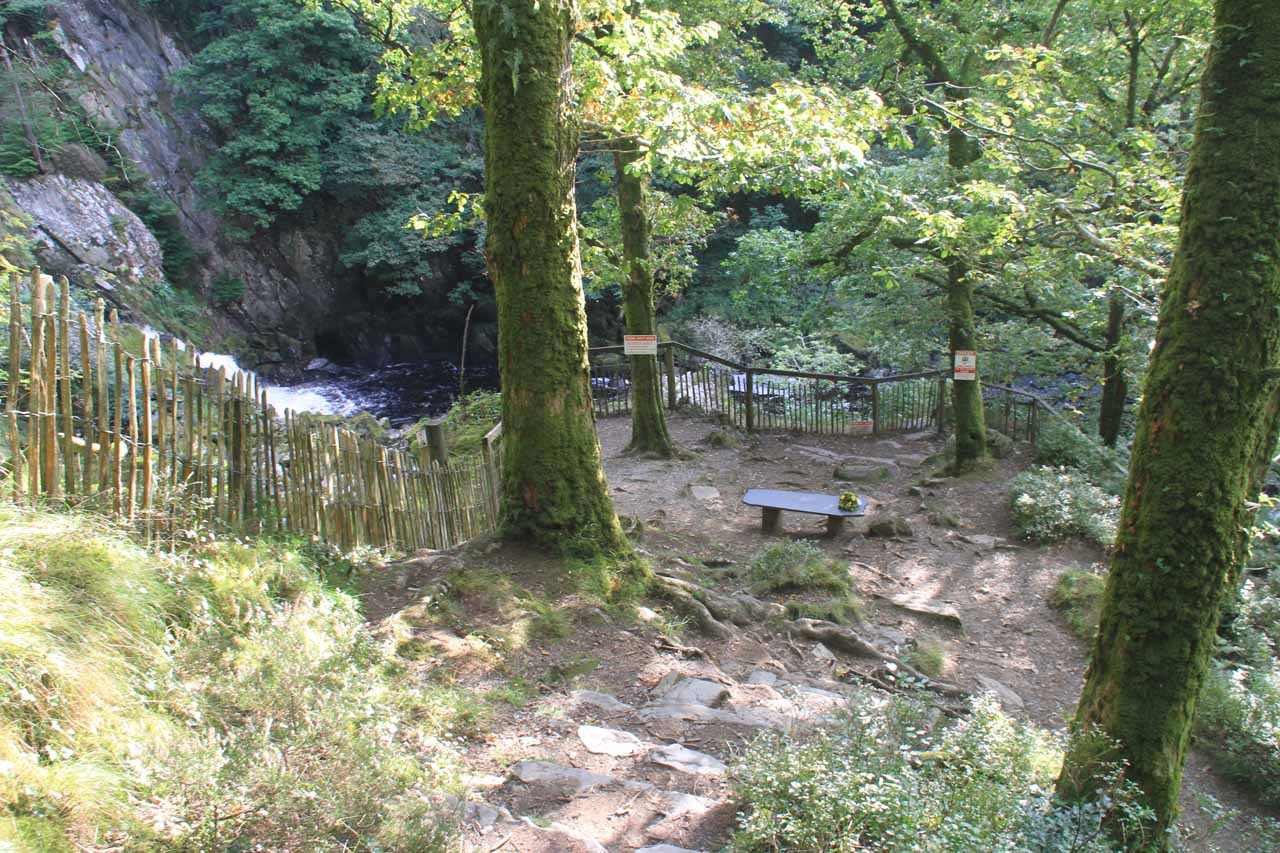 Descending down to the lookout area for Conwy Falls