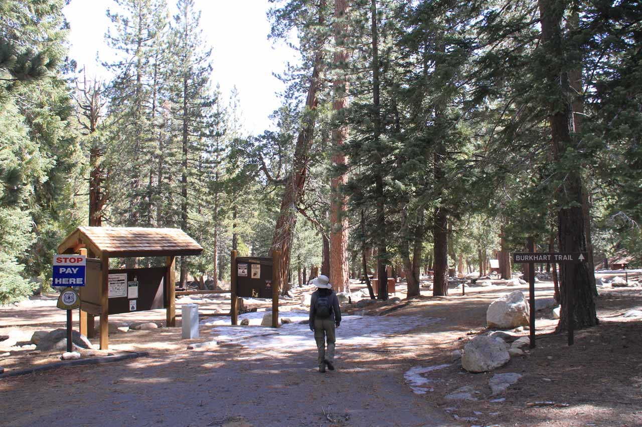 Entering the Buckhorn Campground