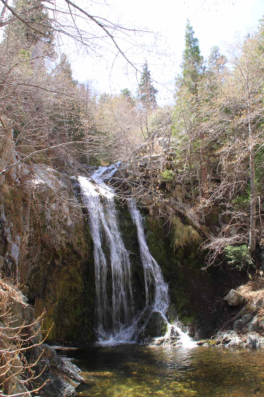 Cooper Canyon Falls was the more accessible (and hence more popular) neighbor to Buckhorn Falls
