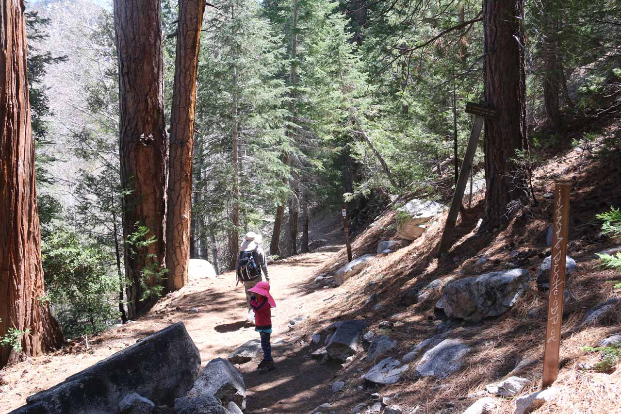 Julie and Tahia at the trail junction between the Burkhart Trail and the Pacific Crest Trail. Cooper Canyon Falls was only a couple of minutes to the right from this spot