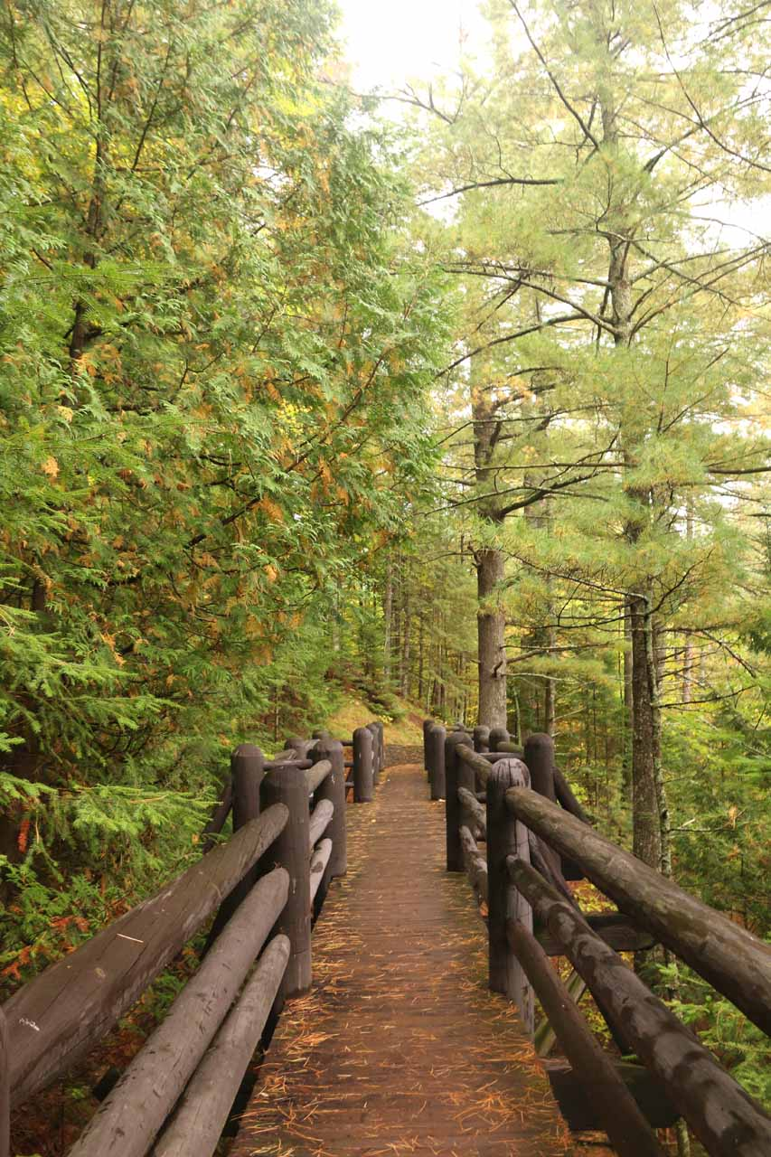 The continuation of the trail meandered over a few more small bridges while being flanked by pine trees with some modest elevation gain and loss