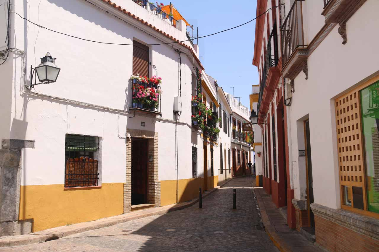 I noticed this rare empty but narrow street in La Juderia while searching for Julie and Tahia