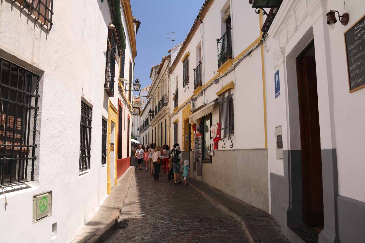 Continuing along the narrow alleyways as we searched for a lunch spot before visiting the Mezquita