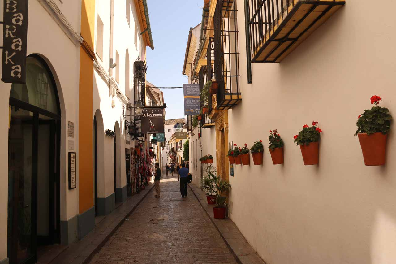 Walking through some more alleyways of La Juderia as we made our way to Cordoba's Alcazar