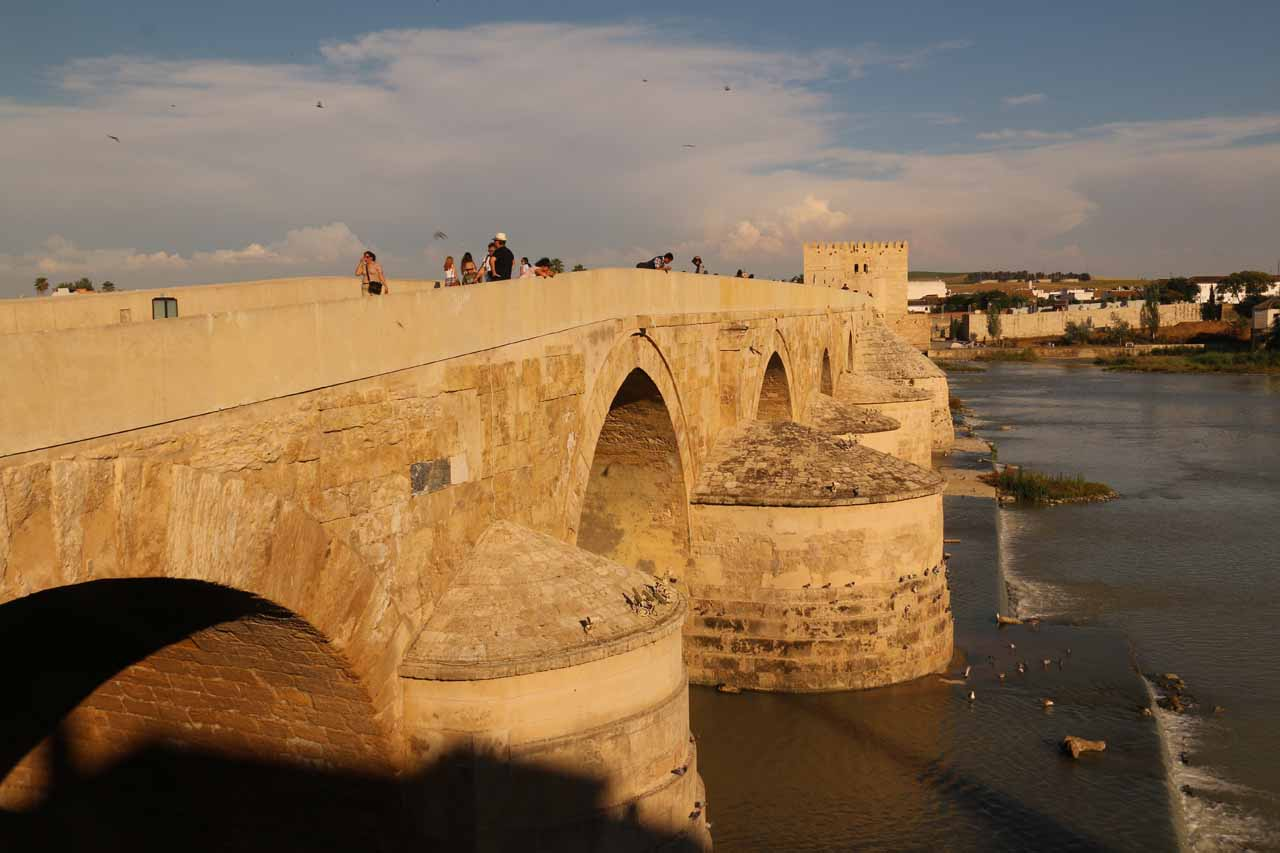 Looking towards the Roman Bridge over the Rio Guadalquivir in Cordoba