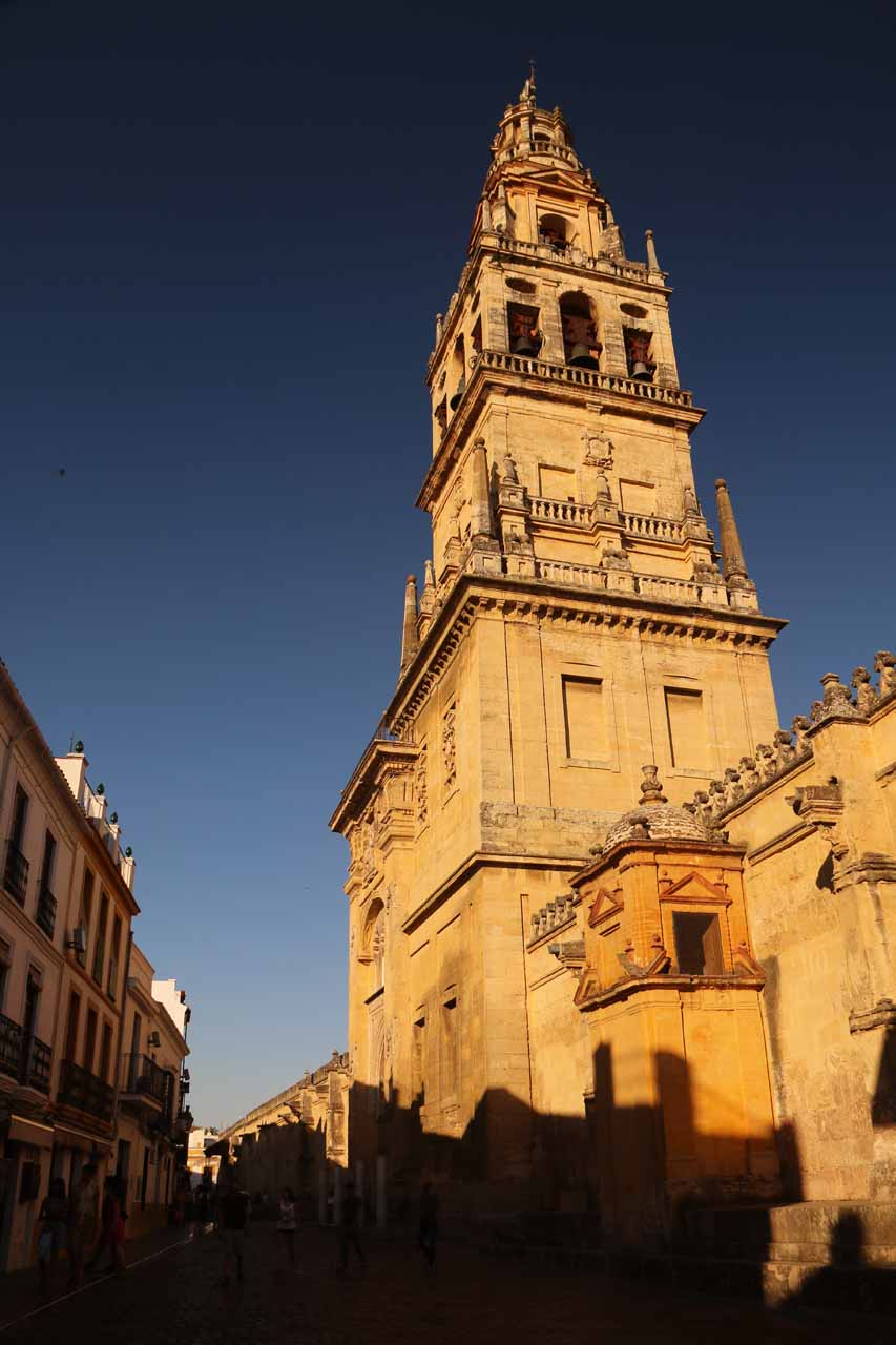 Late afternoon view of the Mezquita's bell tower