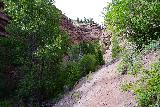 Cornet_Falls_009_07232020 - Approaching a part of the Cornet Falls Trail that I thought might have been pretty eroded