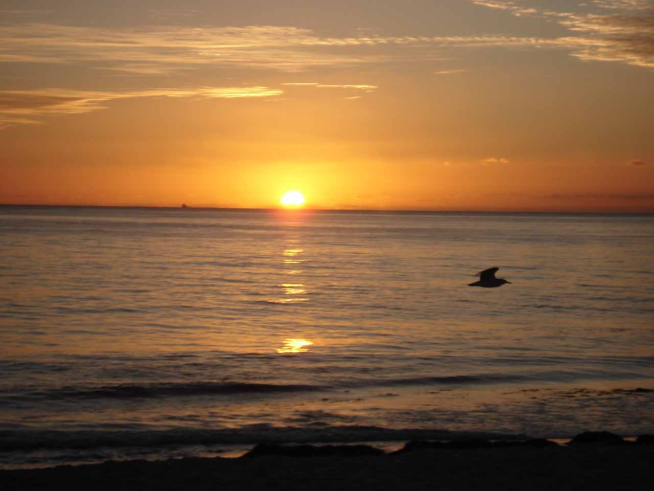 Setting sun at Cottesloe Beach