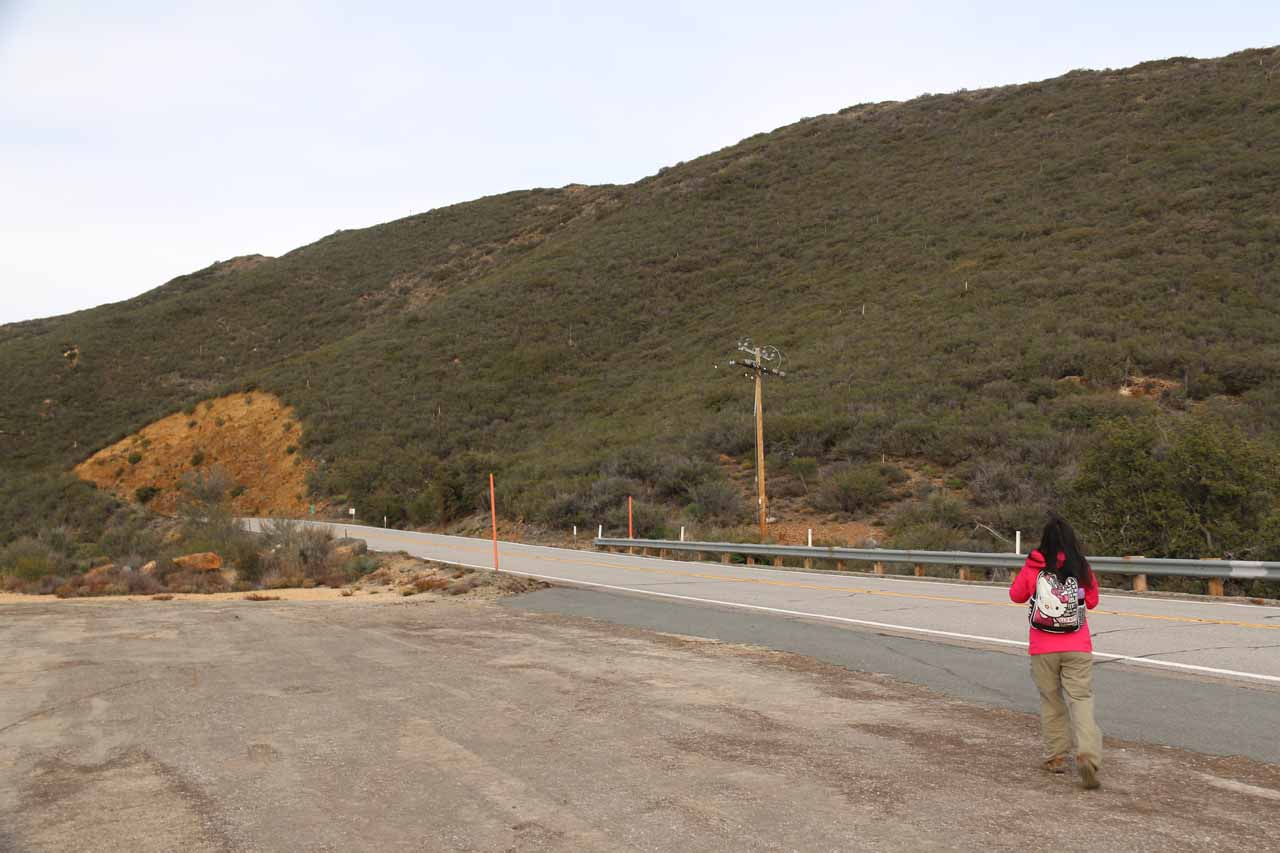 Julie about to cross the Sunrise Highway then head towards the north end of the guard rail on the opposite side of the highway