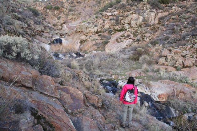 Cottonwood_Creek_Falls_067_01232016 - Julie standing before Cottonwood Creek Falls, which happened to have some water during our Winter 2016 visit