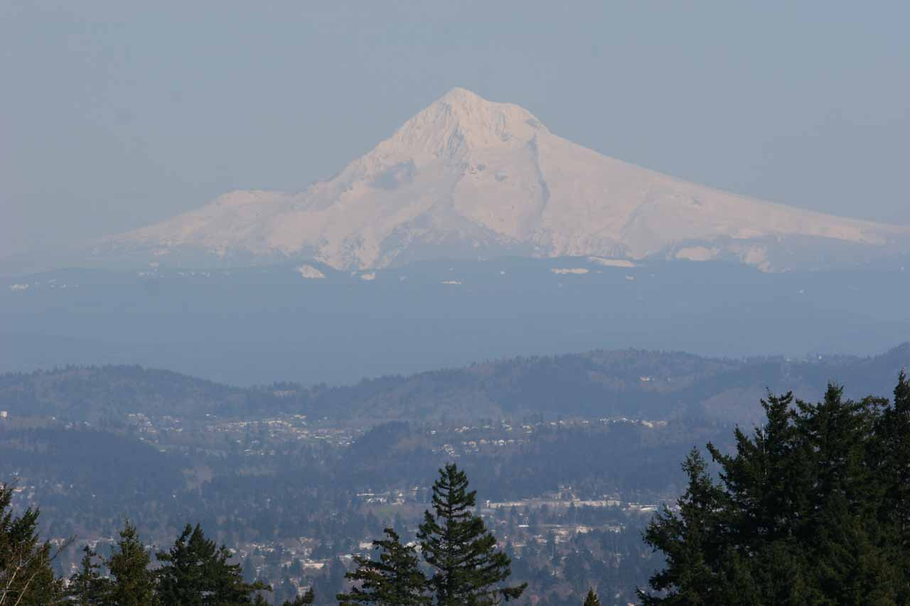 Given the proximity of Multnomah Falls to Portland, if the weather is clear, it's certainly worth going to the city where there are some nice views towards the surrounding volcanoes like this view of Mt Hood from Council Crest