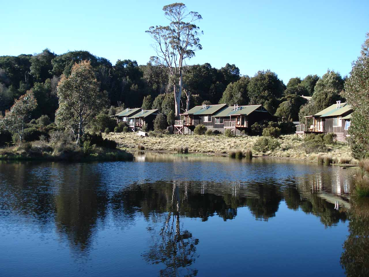 This picturesque little pond looking towards some cabins was the Cradle Mountain Lodge complex, which was where we stayed and it was also close to the trailhead for Pencil Pine Falls