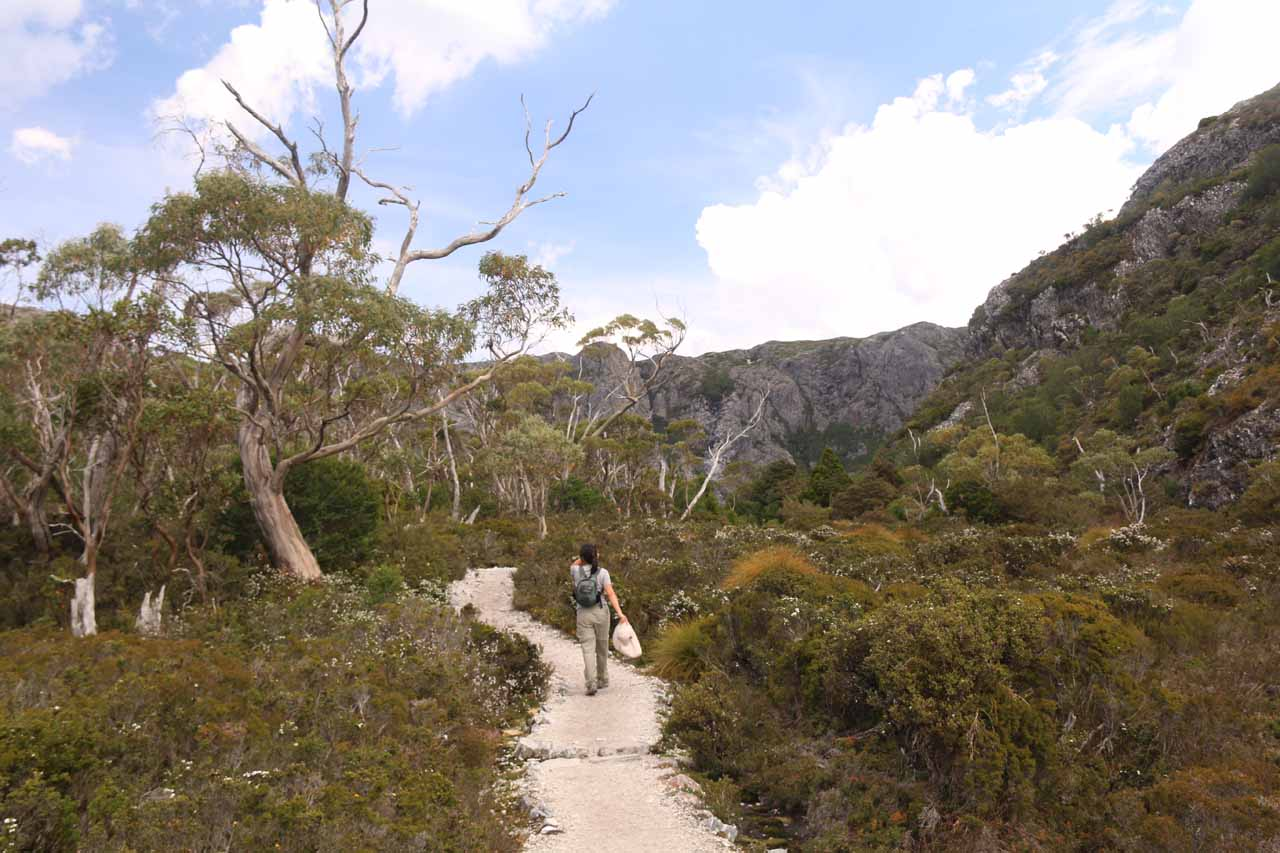 At this point, the Overland Track was momentarily flattening out as the knobby cliffs that I knew surrounded Crater Lake were getting closer