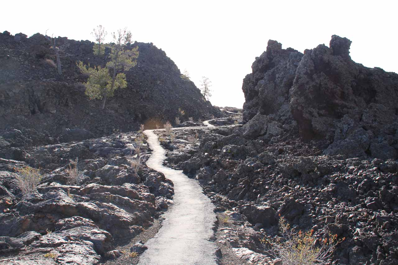 Towards the end of the North Crater lava flow loop walk