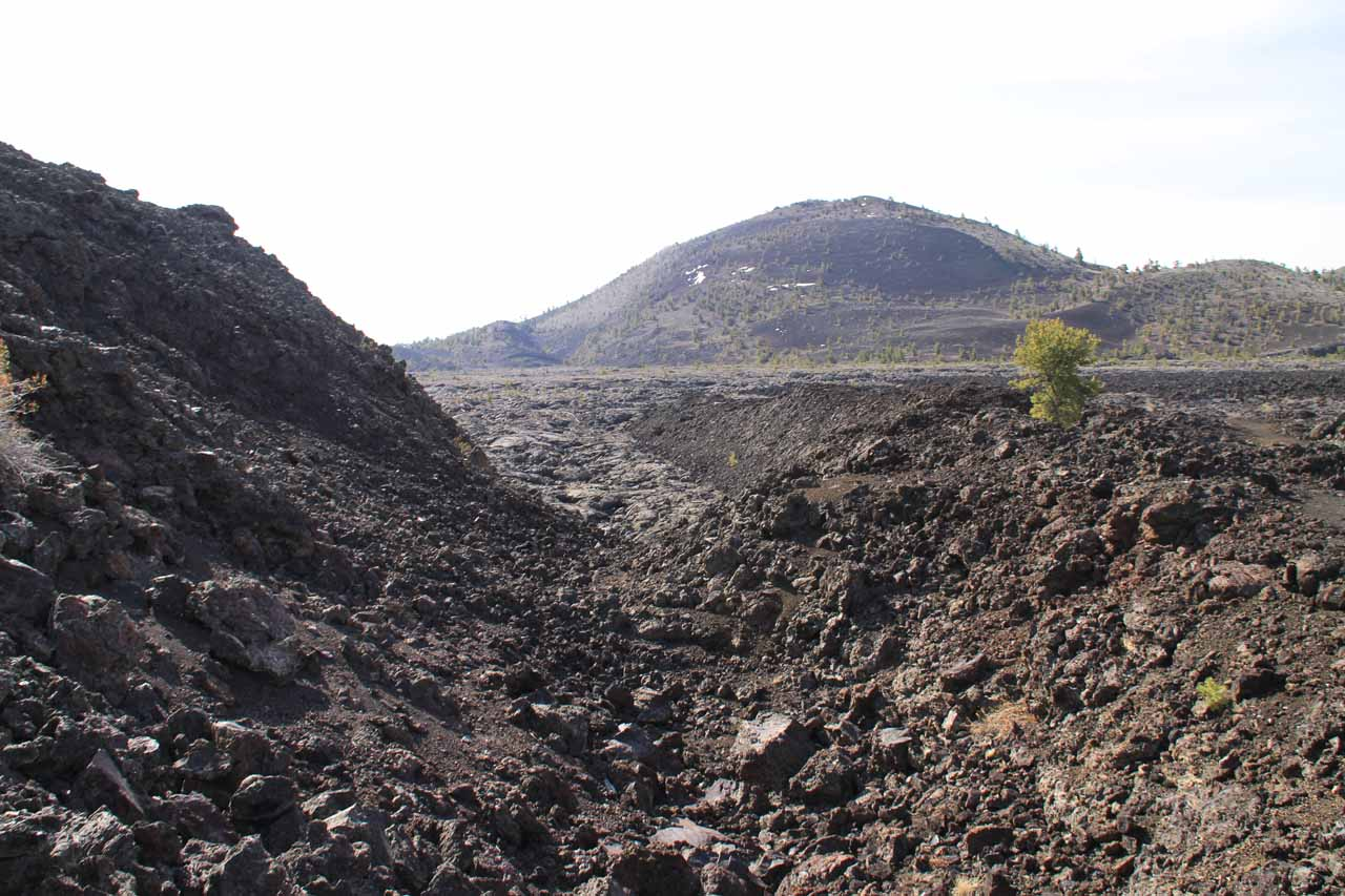 Some old lava flows near the Tree Molds