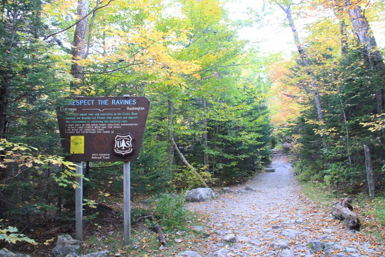 Going past a sign imploring me to respect the ravines.  I got the feeling this sign was meant more for the Tuckerman Ravine Trail though I'm sure it could apply to any ravine