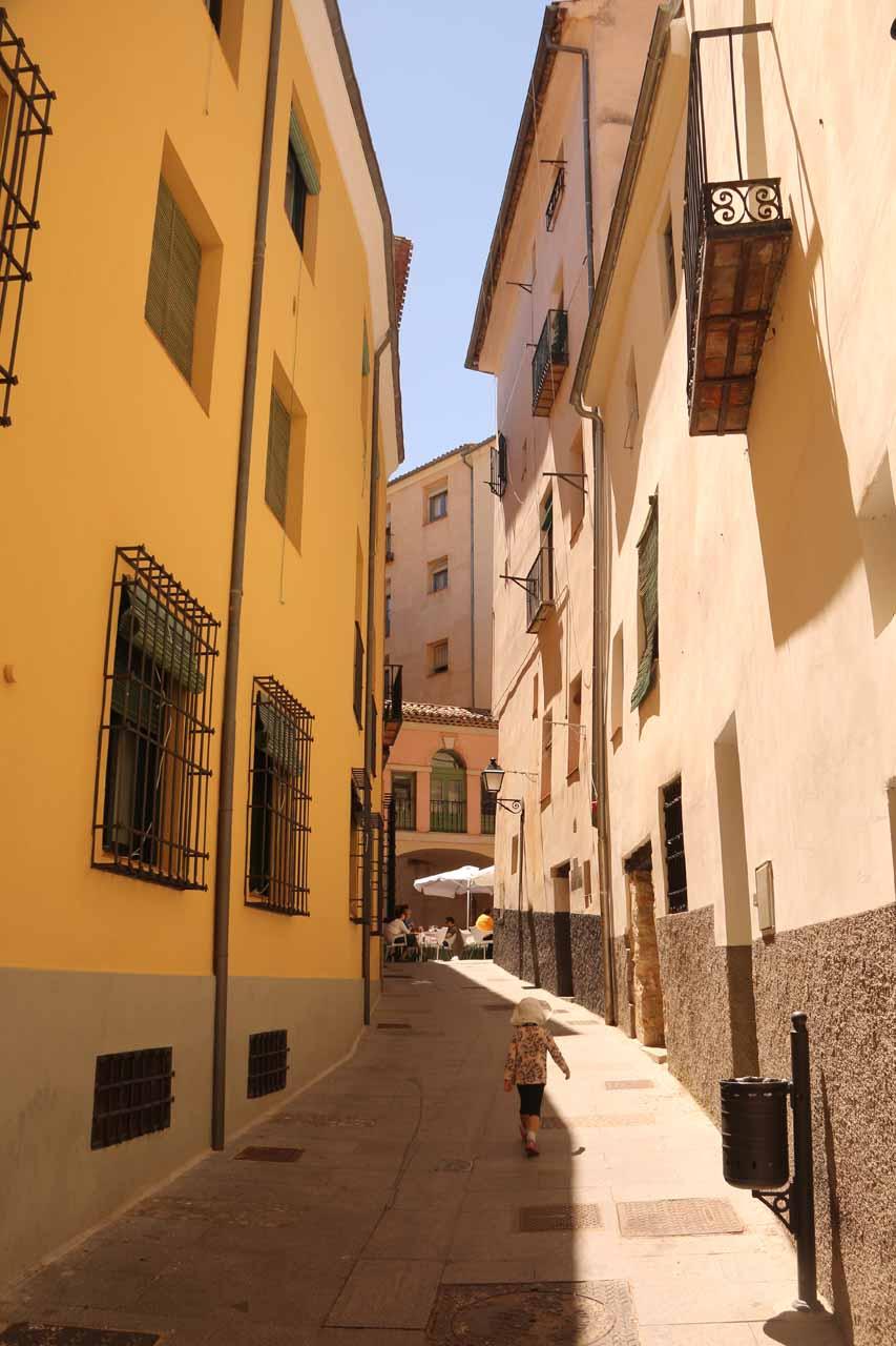 Tahia in one of the narrow alleyways of Cuenca