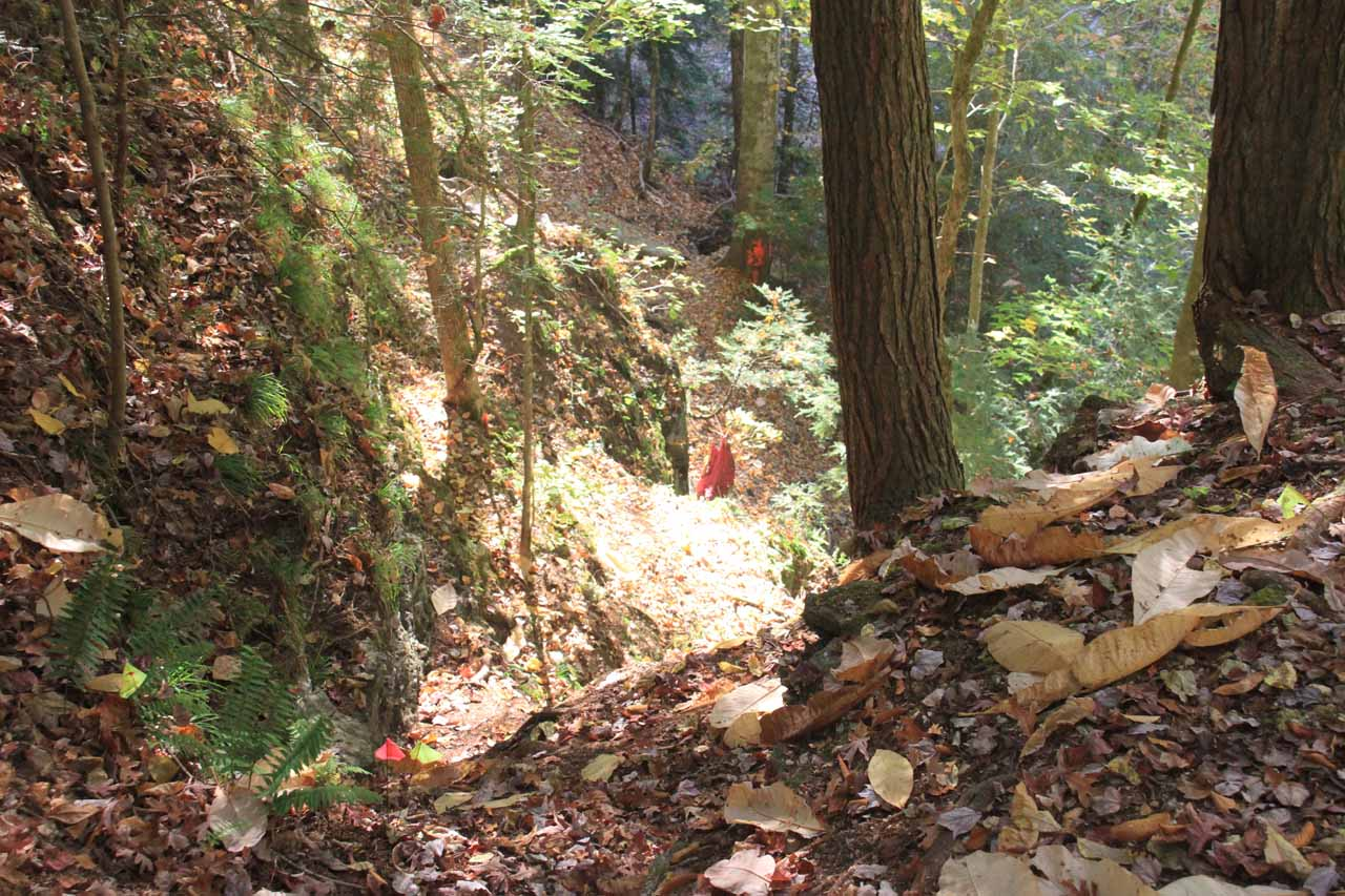 The steep and dangerous shortcut descent to the base of the falls