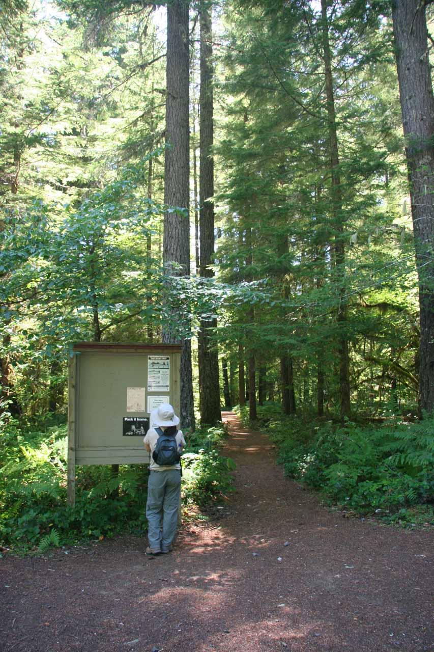 Curly Creek Falls Trailhead