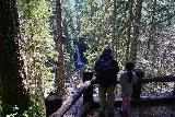 Curly_Creek_Falls_053_04052021 - Julie and Tahia at the lookout for Miller Creek Falls