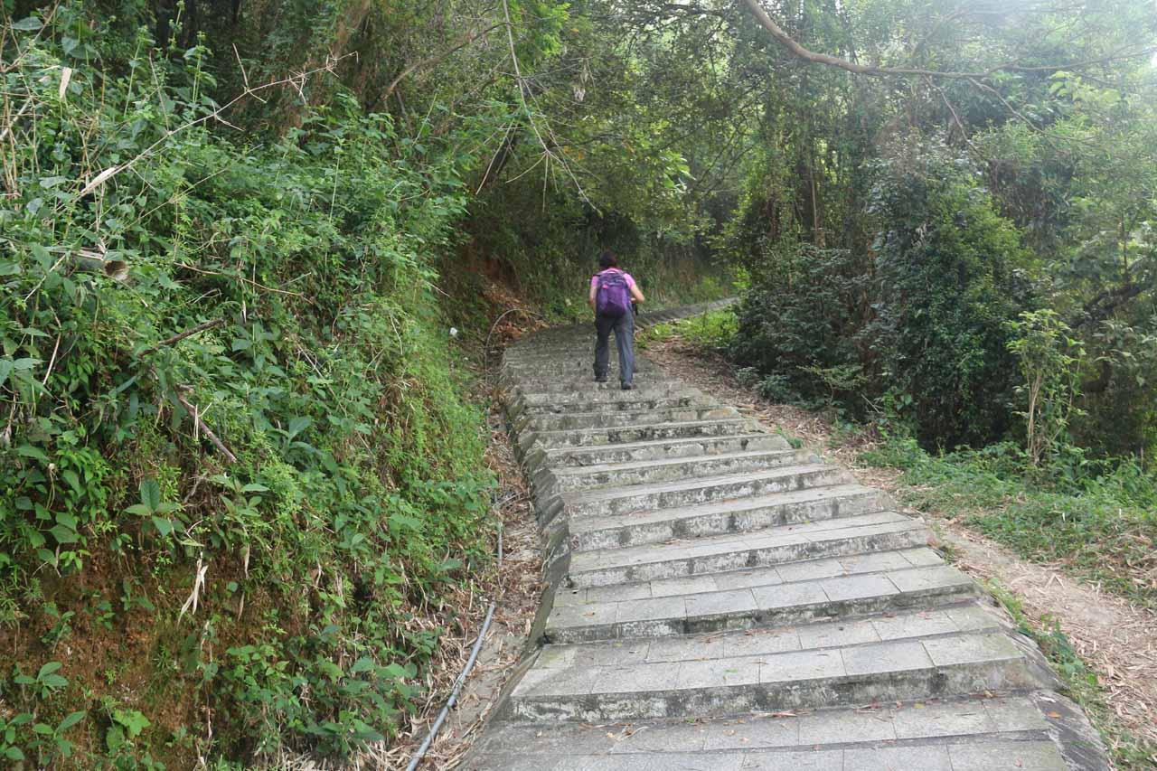 The Dajin Waterfall Trail continued climbing
